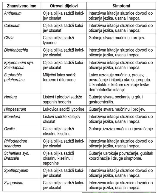 Upoznavanje poteškoće lamborghini