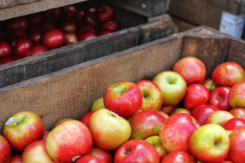 potpore proizvođačima jabuka