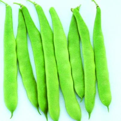zelene široke mahune