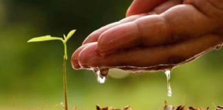 biodinamička poljoprivreda