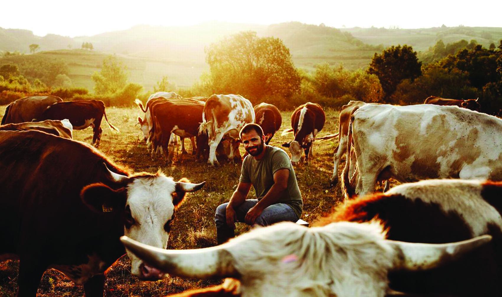uzgoj stoke
