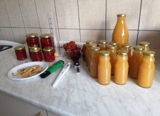 tečaj prerade i dorade voća CROAGRO