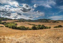 strategiija poljorpivrede i ruralnog razvoja
