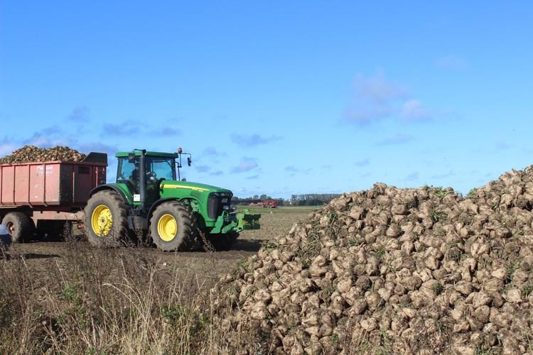 program potpore proizvođačima šećerne repe