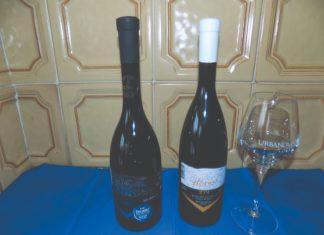 vinarija horvat