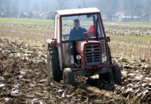 osoba u samoizolaciji rad na polju