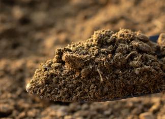 poticanje uporabe stajskog gnoja