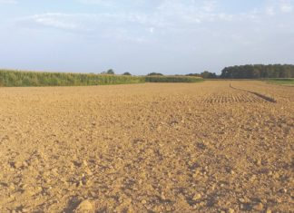 obrada tla nakon žetve