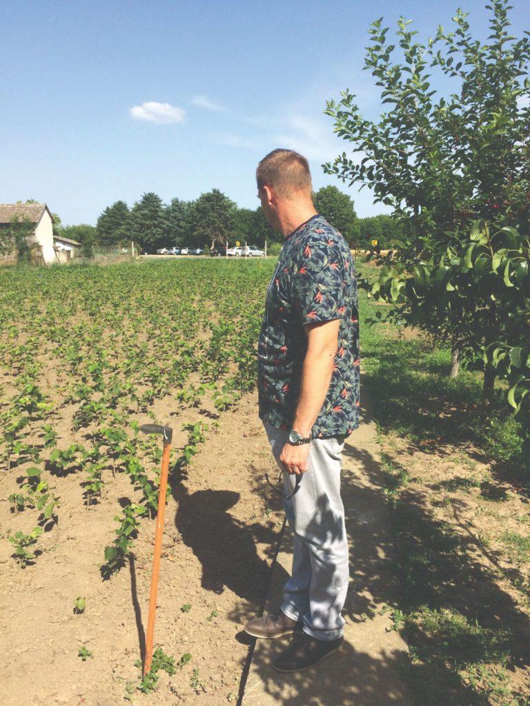 ekološki uzgoj lijeske