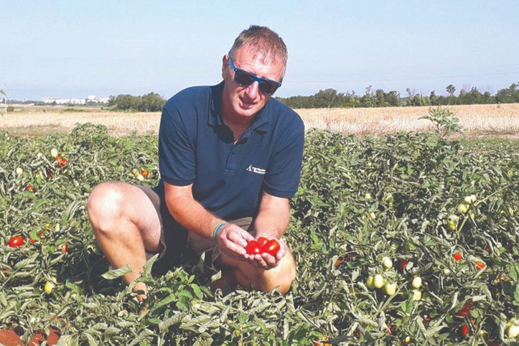 podravka rajčice umag
