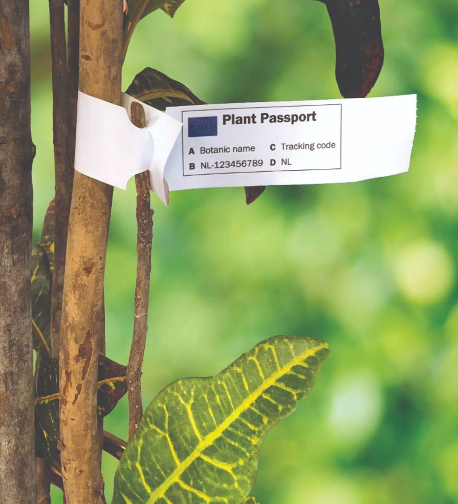 obveze biljno zdravstvo