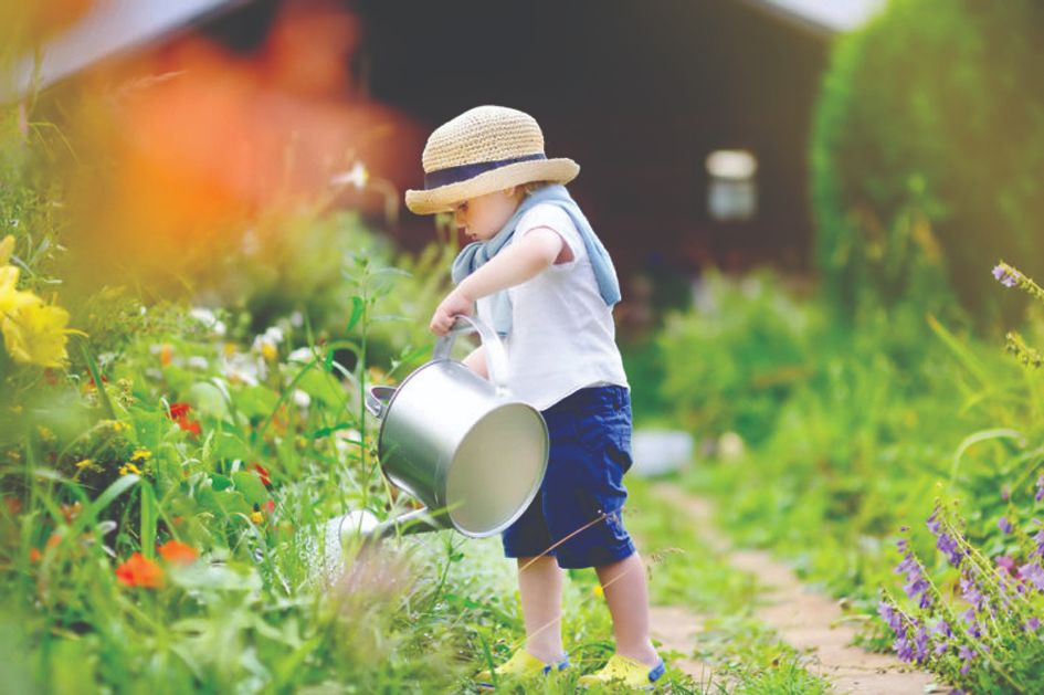 radovi u vrtu