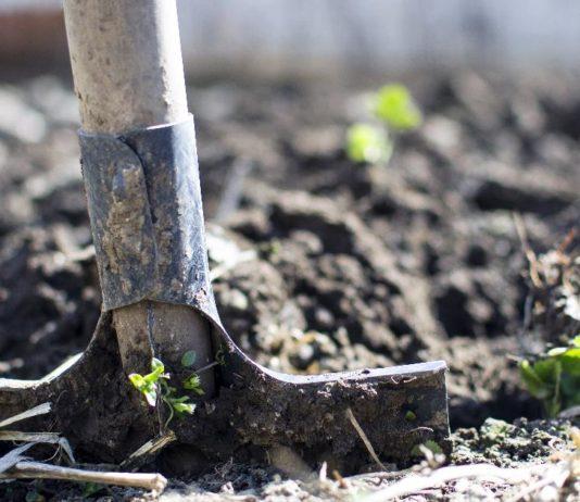 jesenska obrada tla priprema tla za zimu