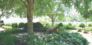 zasjenjeni vrt u sjeni