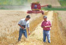 prijedlog strategije poljoprivrede