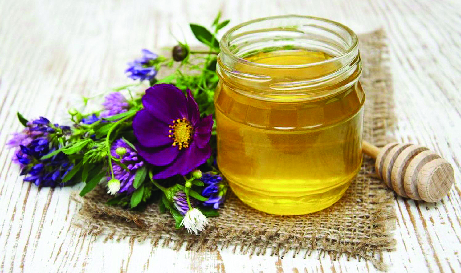 Heather honey, Dalmatian honey, honey from Croatia, www.zadarvillas.com