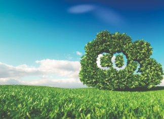GECO2 Ivana Dević CO2