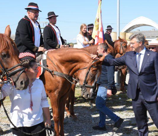 28. državna izložba stoke gudovac