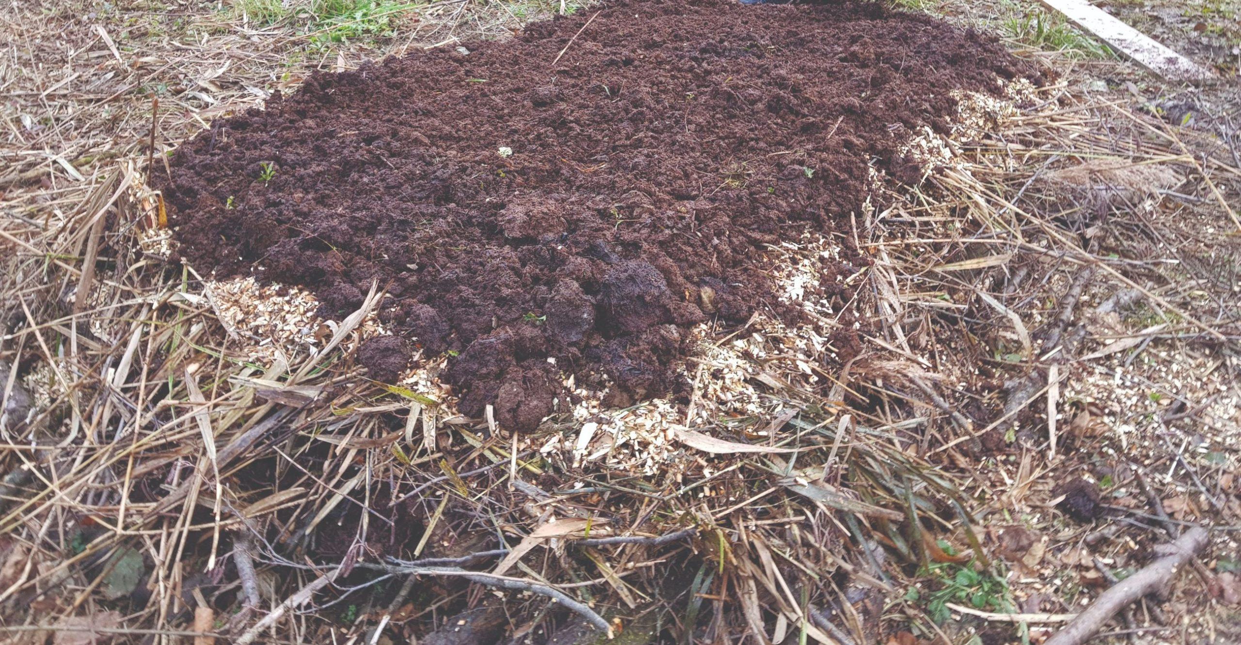 kompost kompostna hrpa