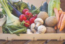 berba povrća