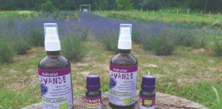 hidrolat ljekovito bilje