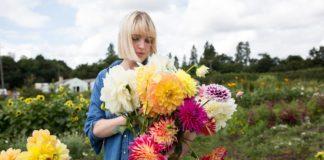 dalija cvijet