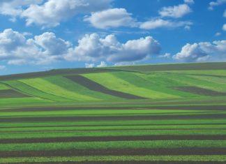 državno poljoprivredno zemljište okruglis tol na agronomskom fakultetu
