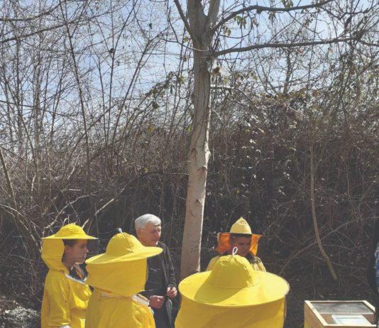 pčelarska škola