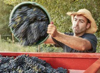 ljudski rad u poljoprivredi