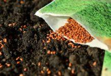 zakon o sjemenu