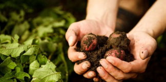 ekološku poljoprivredu