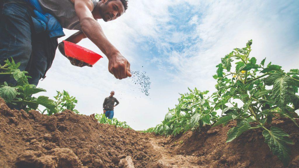 plodnost tla gnojidba
