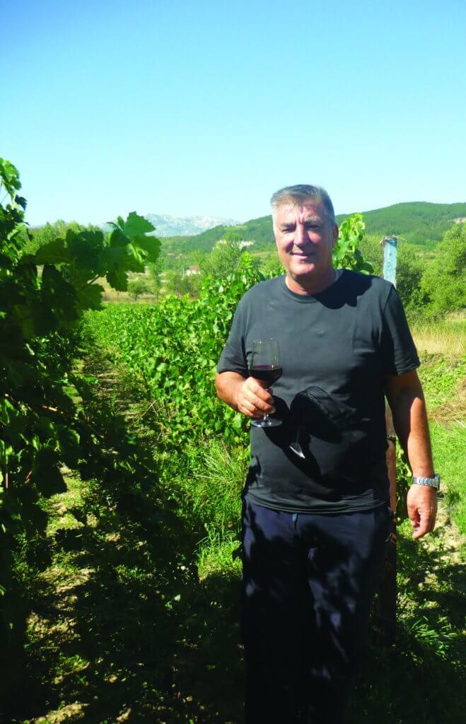vinarija krolo crljenak kaštelanski