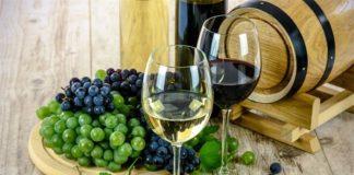 popis proizvođača vina