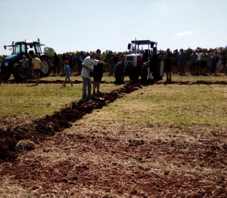 natjecanja u oranju traktorima i volovskim zapregama